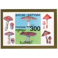 Блок марок Батуми (Грибы) 1 шт.