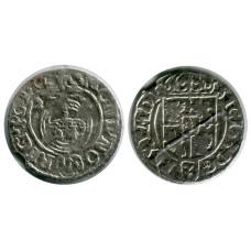 Польский полторак 1624 г. 42