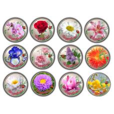 Набор монет 1 рубль, Цветы