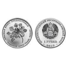 1 рубль Приднестровья 2019 г. Водяной орех