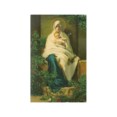"""Открытка """"Madonna dell'Olivo"""" Barabino, Dresden 29786 Германия"""